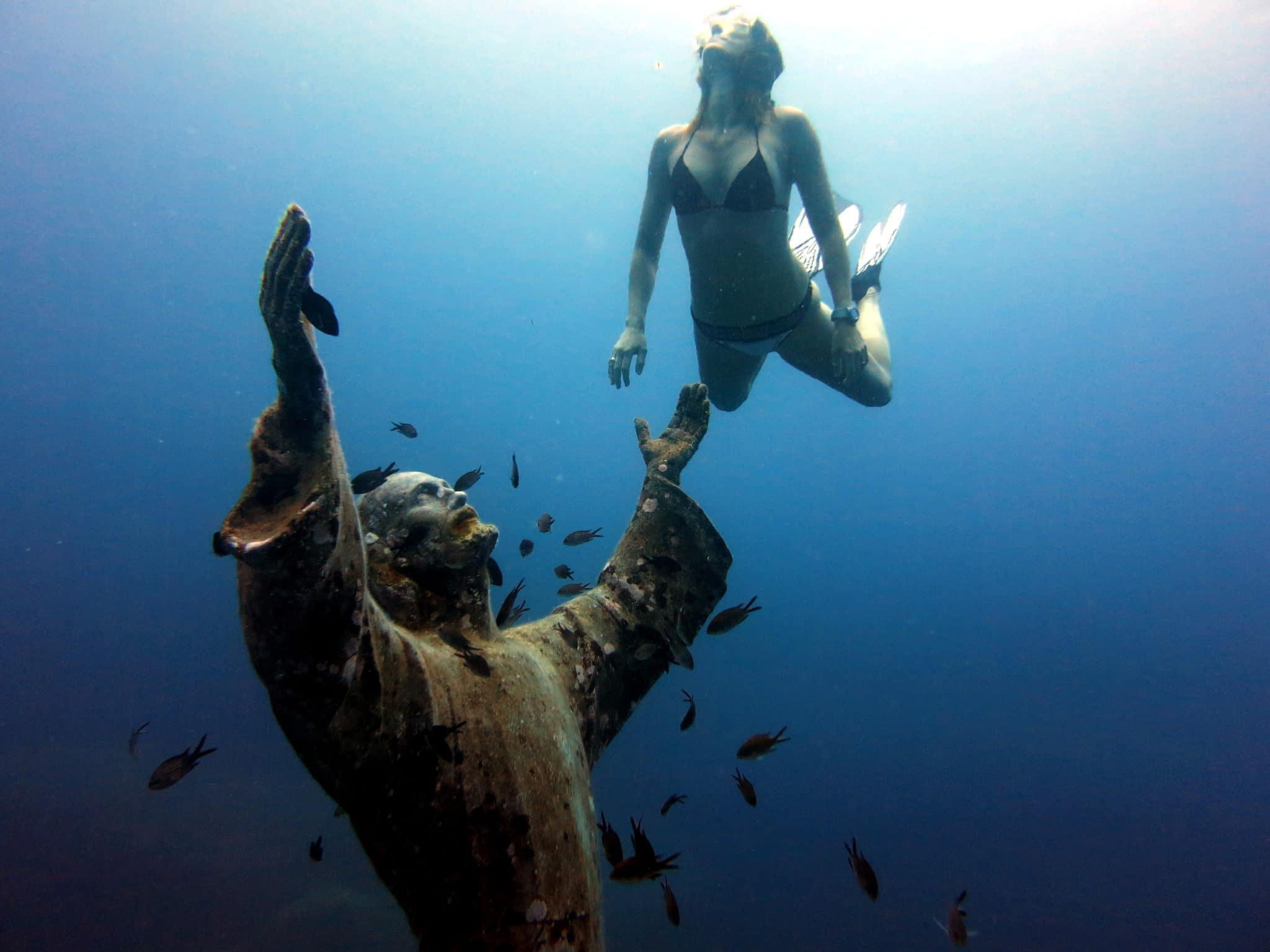 Que significa plongée en frances